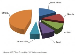 Flexible packaging set for solid growth in Middle East and Africa: PCI Films Consulting
